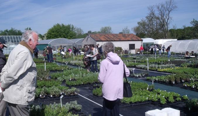 Happy herbs & happy visitors