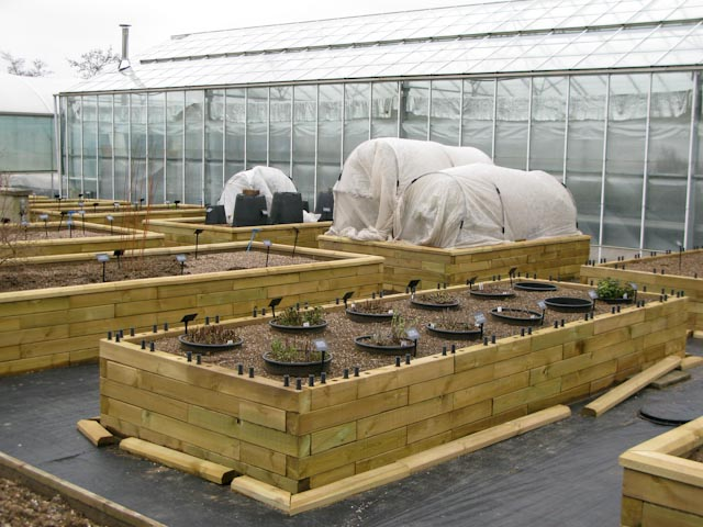 Covered plants