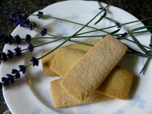 Lavender short bread