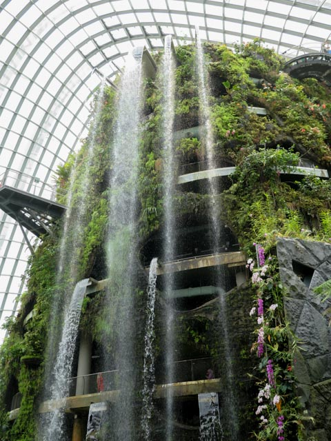 The cloud forest dome